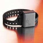 En 2008, l'alternative du bracelet électronqiue devrait être étendue à toute la France.