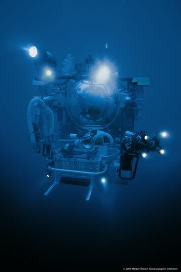 Le submersible Johnson Sea Link dans l'immensité.