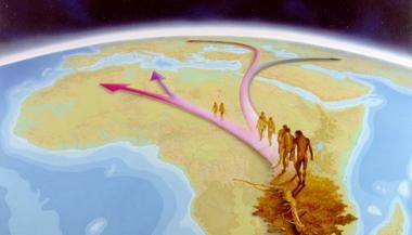Migration de l'Homo sapiens