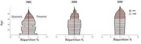 "Evolution de la pyramides des âge de la population en France. Source ""World Population Ageing""."