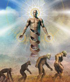 Image  extraite d'un livre scolaire illustrant la nouvelle théorie du dessein intelligent