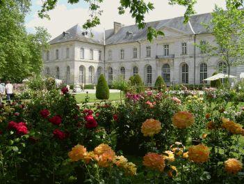 Roseraie de l'abbaye de Chaalis dans l'Oise