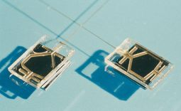 """puces à ADN, """"lab-on-chip"""" ou """"cell-on-chip"""""""