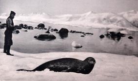 Charcot sur l'Île de Wendel