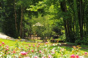 Jardin de Léonard de Vinci au Clos Lucé