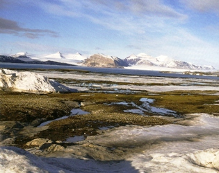 Le dégel du Spitzberg, archipel du Svalbard