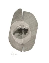 Le tourbillon, gravure de Louis-René Berge de l'Académie des beaux-arts