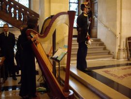 Harpiste de l'Orchestre Colonne, le 19 novembre 2008, Séance publique annuelle de l'Académie des beaux-arts