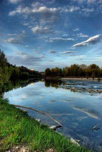 Les poissons des rivières sont les premiers touchés par la pollution aux antibiotiques