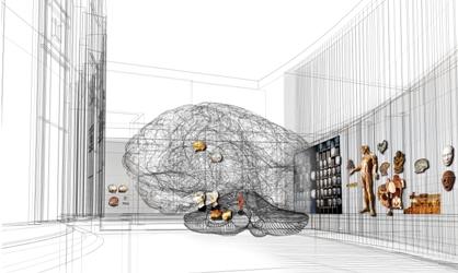 La salle cerveau