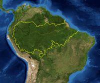 Bassin amazonien