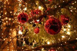 Pas de Noël, sans sapin, guirlandes et autres illuminations!