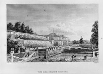 Vue des serres courbes. In ROHAULT DE FLEURY, Charles.- Muséum d'histoire naturelle. - Paris, 1837