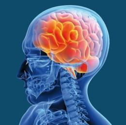 On estime que 15 millions de Français sont actuellement touchés par une pathologie du cerveau.