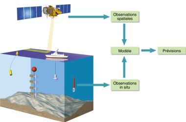 Les observations en mer sont constituées de  3600 points qui fournissent chaque jour des millions d'informations