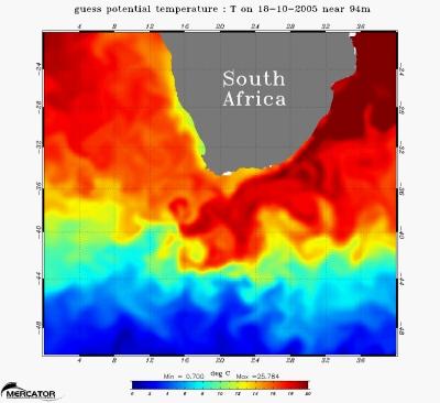 Observation des tourbillons en mer à 100 mètres de profondeur en Afrique du sud