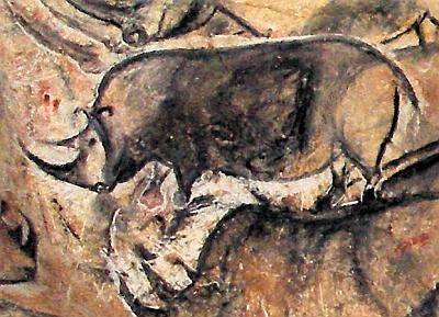 Grotte Chauvet, rhinocéros